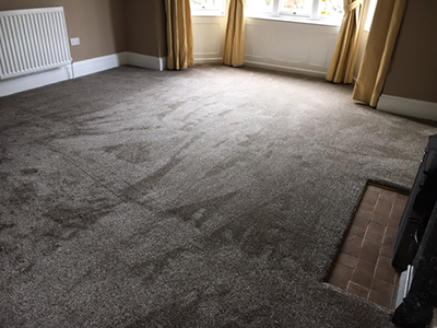Quality grey carpet in living room